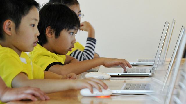 日本开发者生存现状:23%开发者月收入不足500元