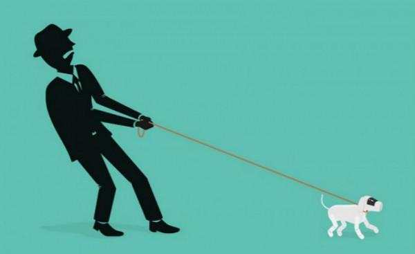 为什么我们像驯化小狗那样驯化算法